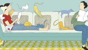 Vide-Grenier, scritto da Davide Cali e illustrato da Marie Dorléans   Sarbacane (2014)